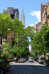 New York jednosměrka se zelení