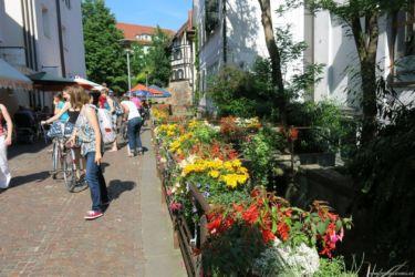 Tübingen 1
