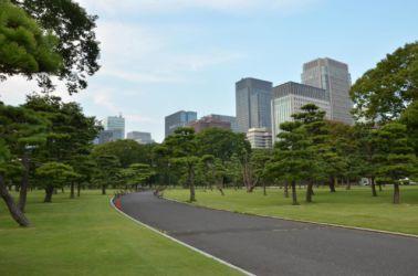 Tokio centrální park, klid a je si kde sednout